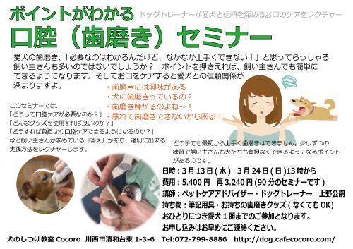 犬の口腔ケアセミナー【歯磨き】